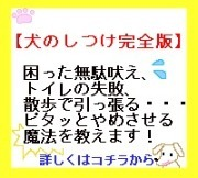 犬のしつけバナー(小).jpg